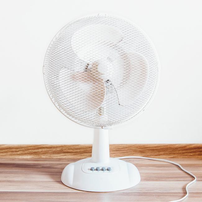ventilateur-Bleue Rachel